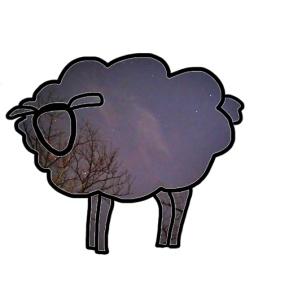 WriteMeg Starry Night Logo 2