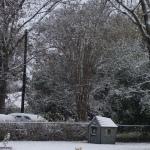 Snow Morning!!