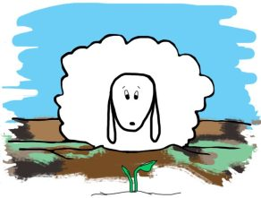 Deeply Rooted Sheep